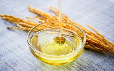 8 Reasons Why Rice Bran Oil is Important in Your Diet